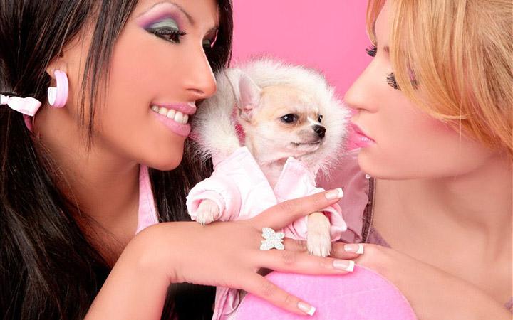 Собачки для женщин